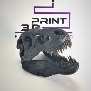 cap schelet Trex 3D PRINT FirstPower.ro Printare / Imprimare 3d pentru oricine Bucuresti